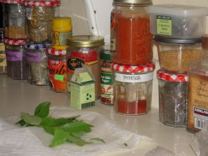 some Indian spices
