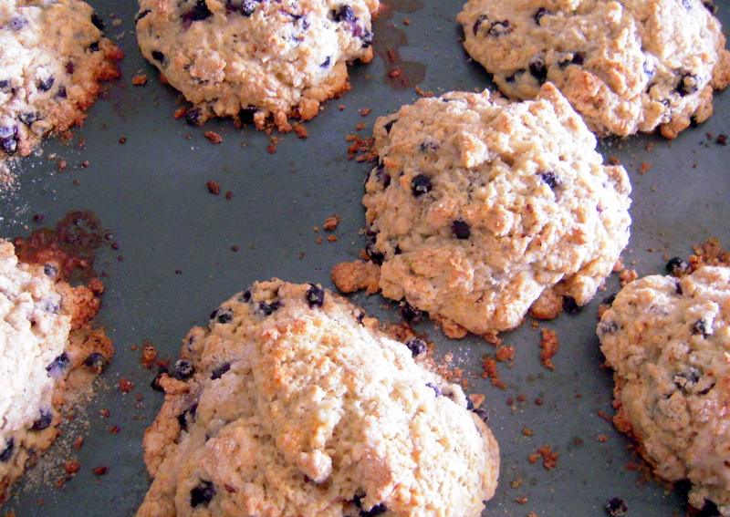 freshly baked blueberry butter scones