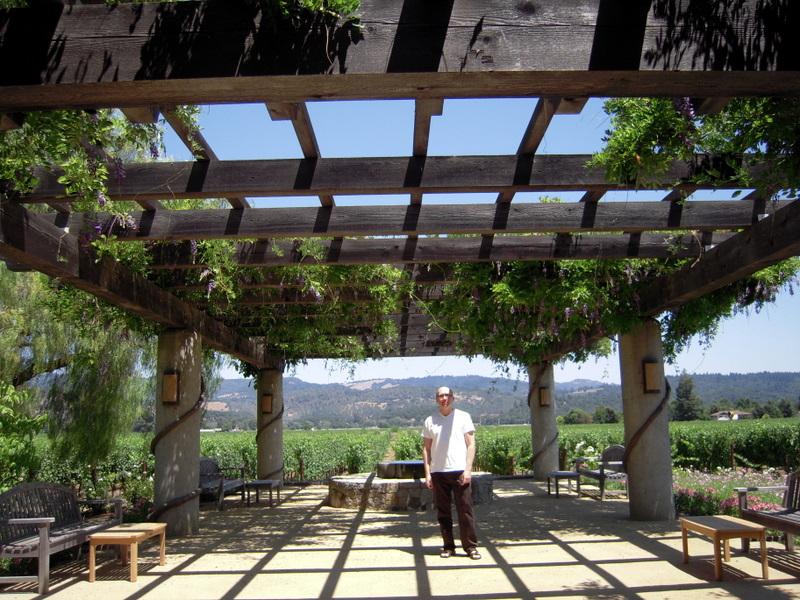beautiful vineyard views behind the Heitz tasting room