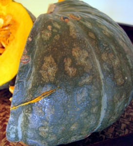 beautiful kabocha exterior