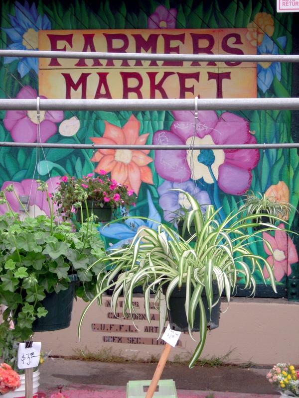 Alemany Farmers' Market