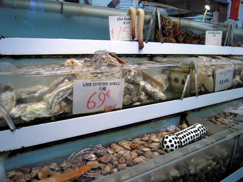 live shellfish for sale