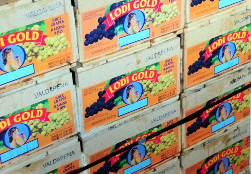 Lodi Gold