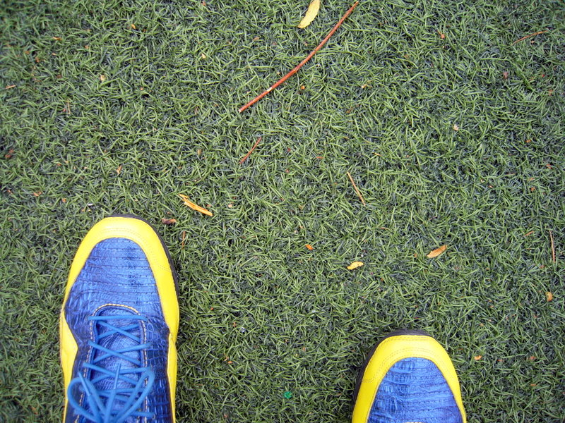 close up of the amazing Astroturf