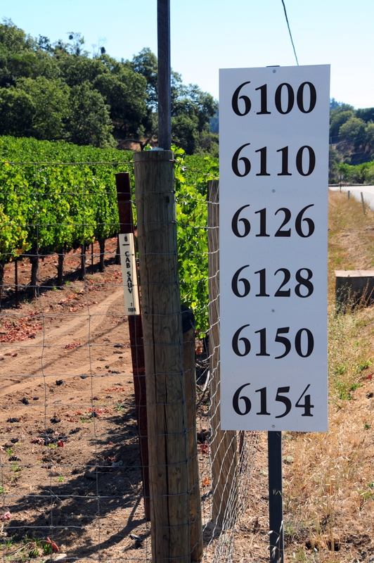 looking at this sign on Silverado Trail, would you ever realize that this was the address of a world class winery