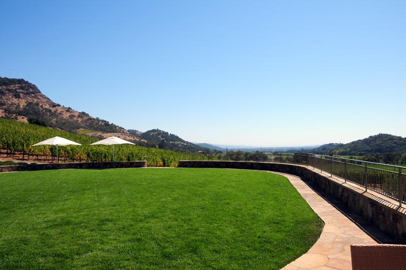 stunning veiws from the Shafer grassy terrace