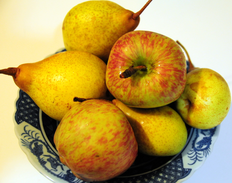 organic apples and pears from Ann's garden