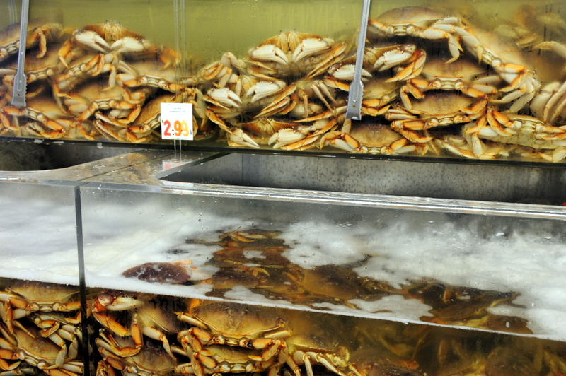 live Dungeness crab for sale at Sun Fat