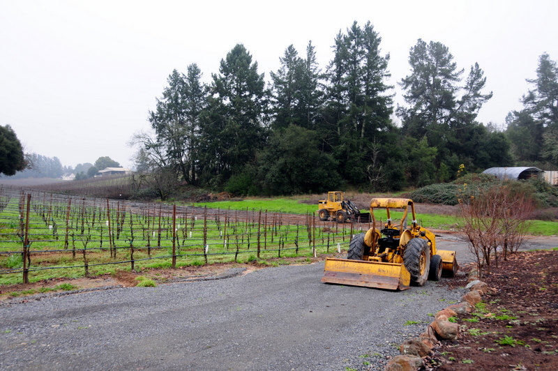 Merry Edwards winery on a dismal January afternoon