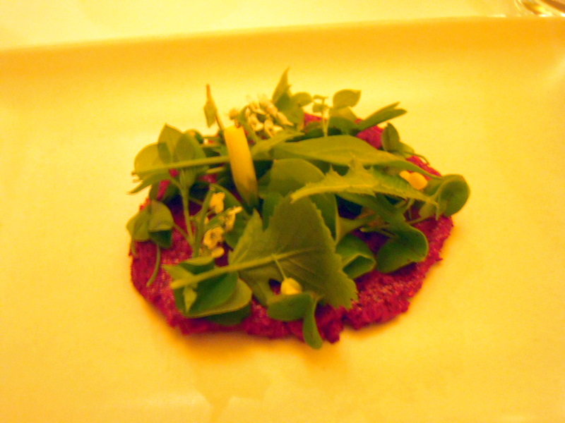 beets with cheese and wild sprouts and flowers