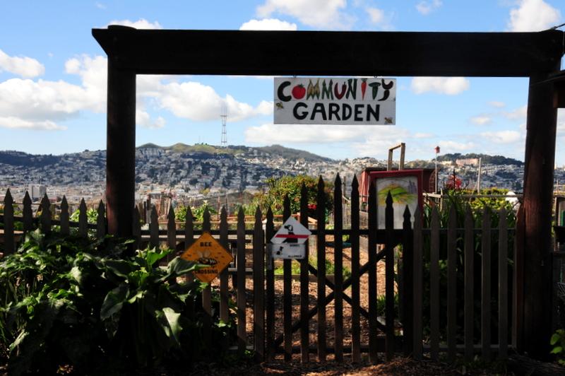 entrance to the new community garden. Sorry Clarence, no dogs allowed!