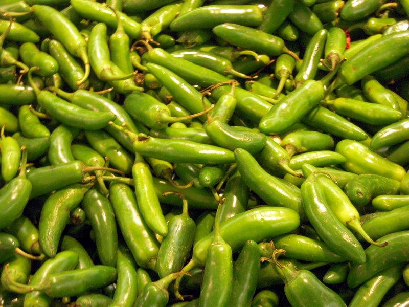 beautiful serrano chiles