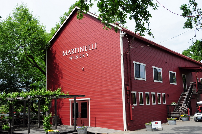 welcome to Martinelli Winery