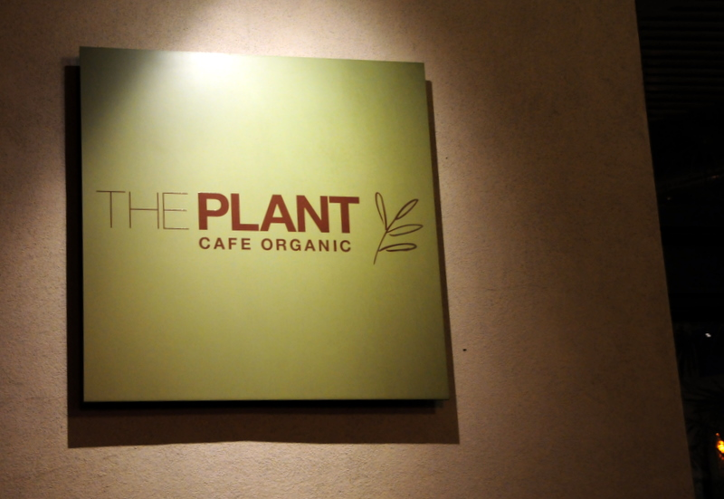 welcome to The Plant Cafe Organic