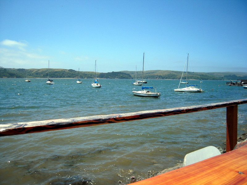 Tomales Bay view from our table