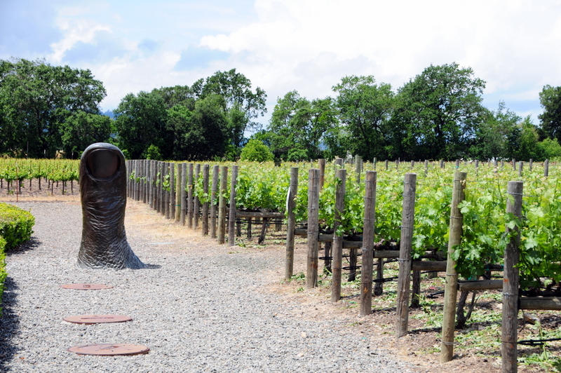 thumbs up for Clos Pegase