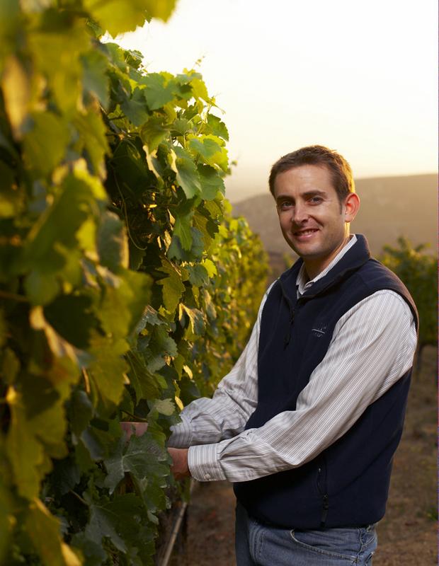 Nicholas Miller in Bien Nacido Vineyard