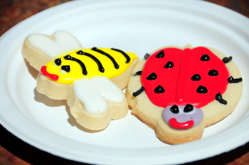 playful sugar cookies