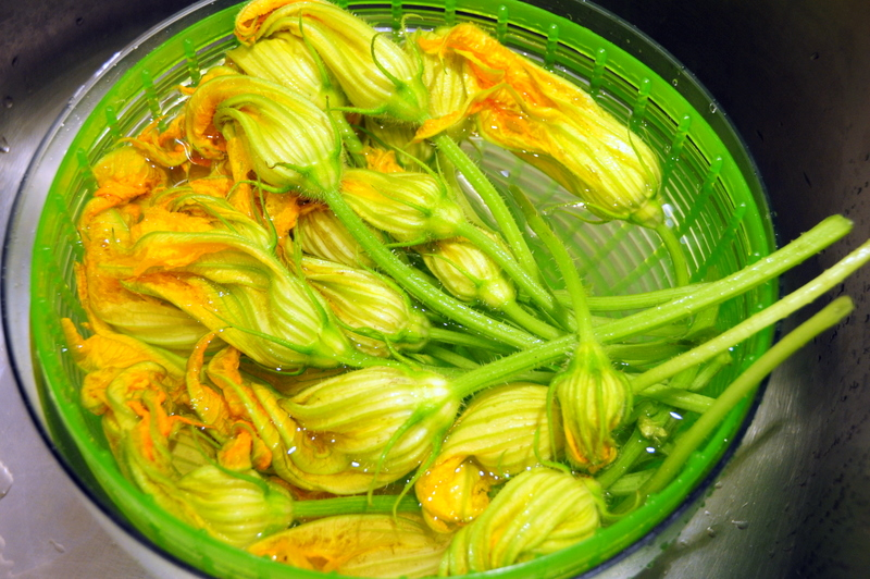 soaking my zucchini blossoms