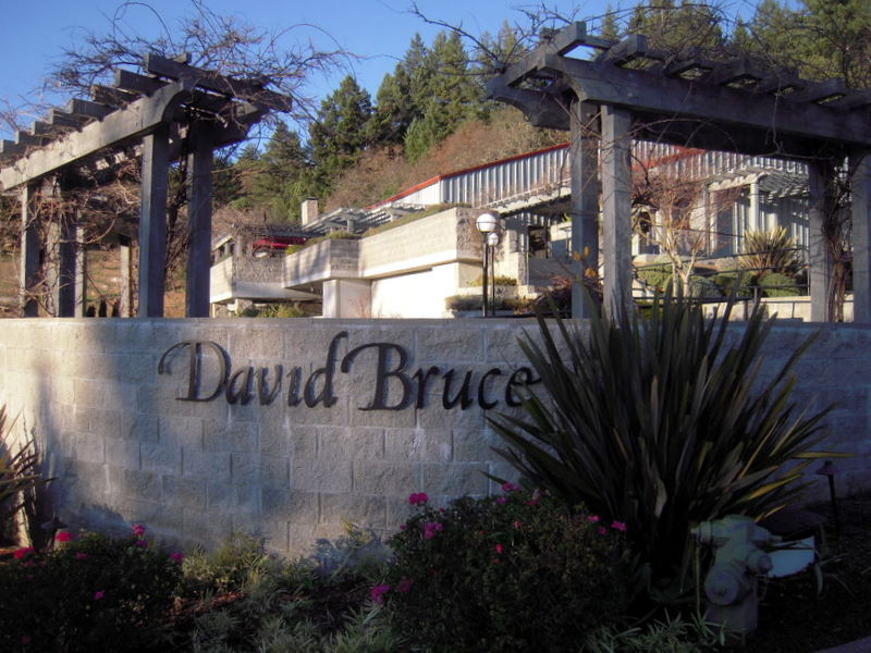 welcome to David Bruce Winery