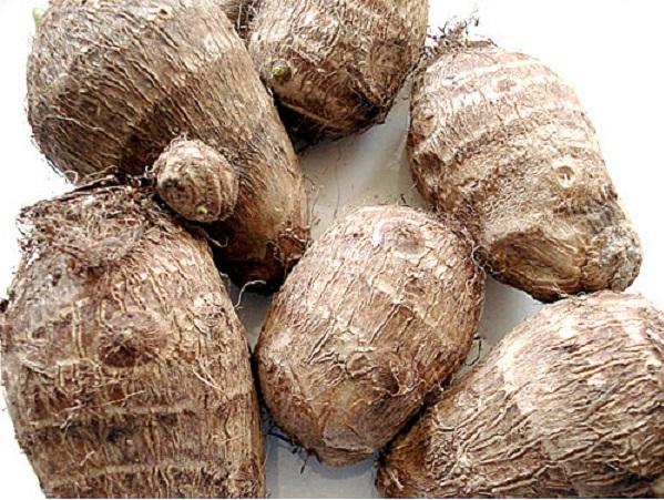 fresh taro root
