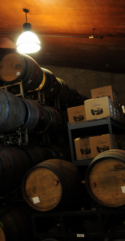 Littorai barrel room