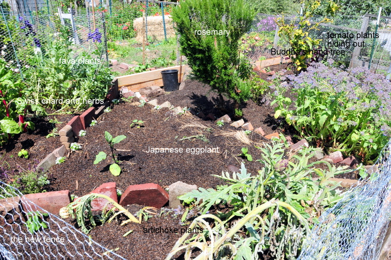 our new plot after all the heavy lifting and toil
