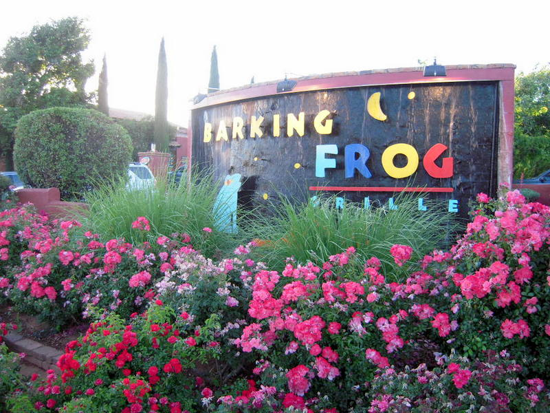 welcome to the Barking Frog Grille
