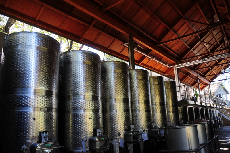 modern winemaking facility