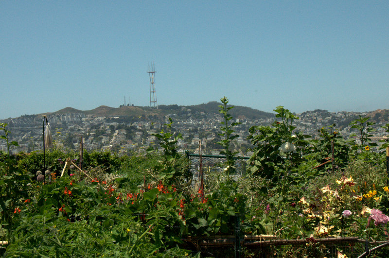 Sutro tower and twin peaks in the backgrond